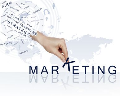 Modèle de plan marketing Premium
