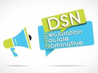 DSN phase 3 : une bonne montée en charge mais des dysfonctionnements