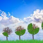 ISO 20400 : les entreprises qui achètent responsable économisent sur le long terme