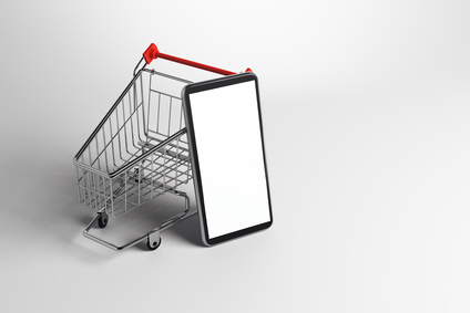 Le e-commerce : trop cher pour les TPE